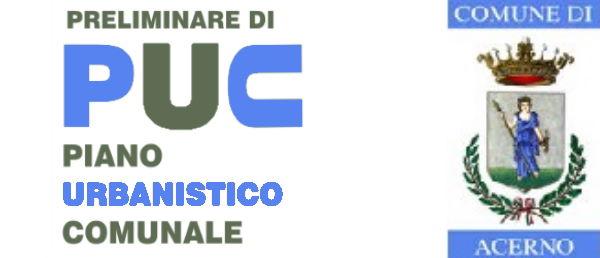 Preliminare PUC 2021